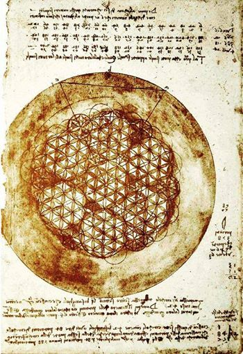 Flower of Life - Leonardo Da Vinci
