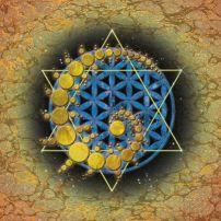 Flower of life spiral