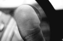 Whorls on my thumb