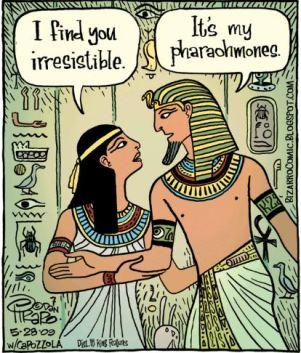 Egyptian-Love-Pharohmones